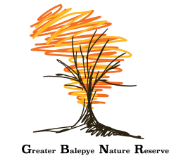 Greater Balepye Nature Reserve